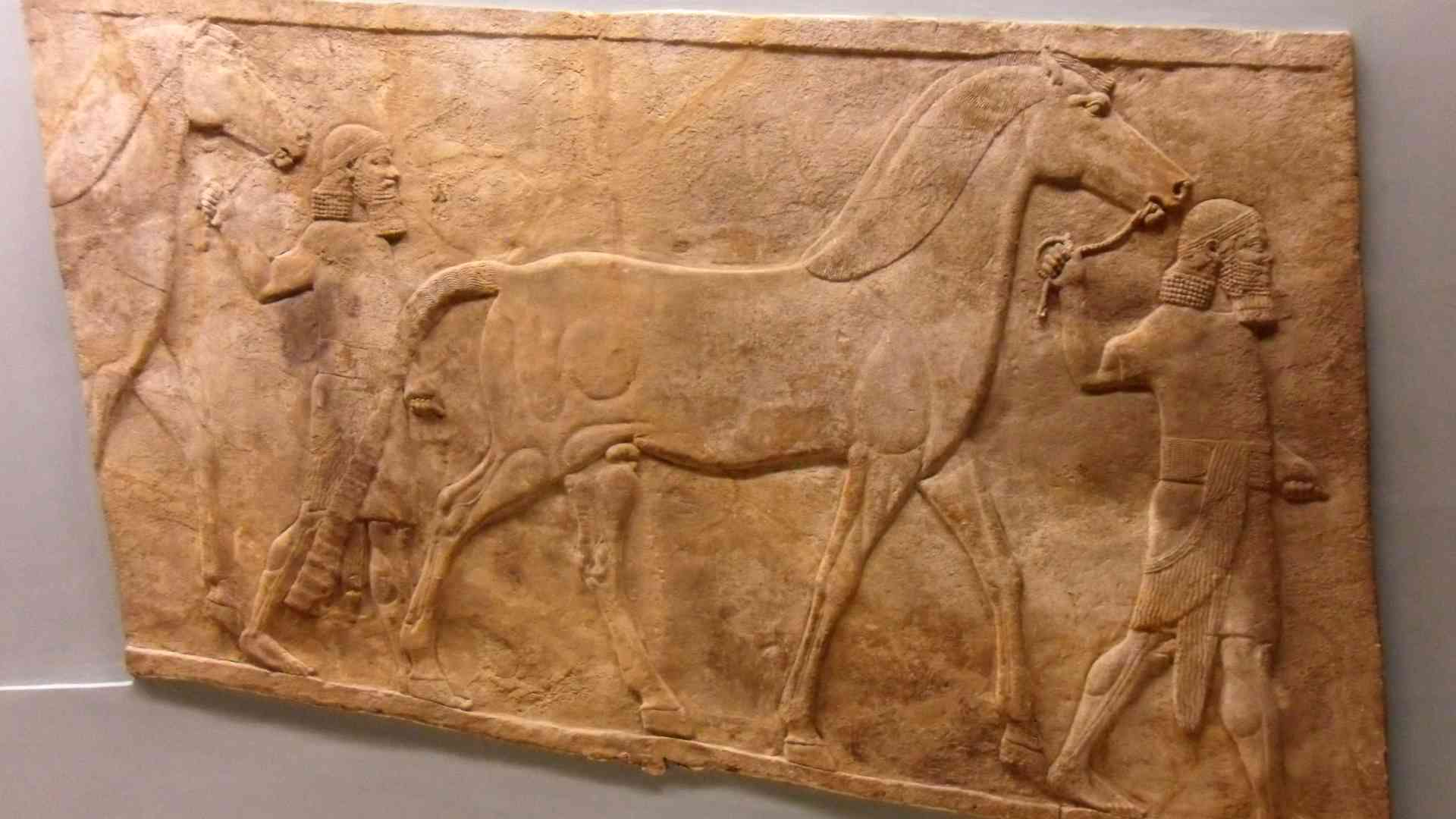 Chevaux quittant le Palais de Ninive - British Museum - Photo P. Vauclair